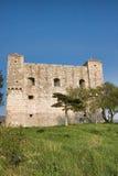 fästningnehaj Royaltyfri Fotografi