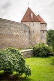 Fästningvägg och torn av den gamla staden, Tallinn, Estland Royaltyfri Foto