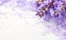 Få kvistar av lavendel- och mineralbadsalt på trätabellen Grund DOF Selektivt fokusera fotografering för bildbyråer