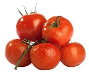 Få röda nya våta tomater Royaltyfri Foto