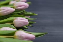 Få rosa tulpanblommor på mörk chalcboard ytbehandlar Bukett på en suddighetsabstrakt begreppbakgrund med kopieringsutrymme Royaltyfri Foto