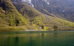 få små lantliga hus i aurlandsfjord i försommar Royaltyfri Foto