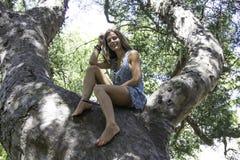 Få upp i träden Fotografering för Bildbyråer
