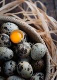 Fågelägg med ett av dem brottet och beskådar äggulan Royaltyfri Bild