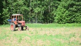 Fågel för traktorsuggafält lager videofilmer