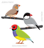 Fågel Finch Set Cartoon Vector Illustration Royaltyfria Foton