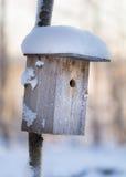 fågel fryst hus Arkivbild