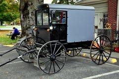 Fågel-i-hand PA: Parkerad Amish barnvagn Royaltyfria Bilder