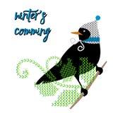 Fågel i hatt stock illustrationer