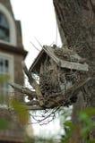fågel kran del hus fördärvar royaltyfri foto