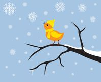 fågel little vektor illustrationer