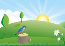 fågel little platssommar royaltyfri illustrationer