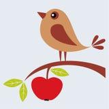 Fågel och äpple Fotografering för Bildbyråer