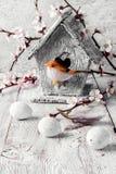 Fågel och birdhouse Royaltyfri Fotografi