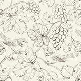 Fågel och druva, sömlös modell. royaltyfri illustrationer