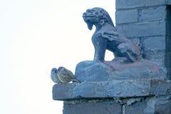 Fågel och mytiskt djur arkivbilder