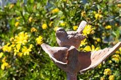 Fågel på en springbrunn arkivfoto
