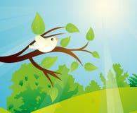 Fågel på en trädfilial och en Sunny Day royaltyfri illustrationer