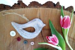 Fågel på träbakgrund 6 Arkivfoto