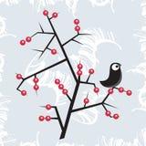 Fågel på trädet. Royaltyfri Fotografi