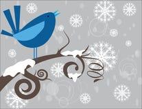 Fågel på vinter Arkivbild
