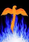 fågel phoenix Royaltyfria Bilder