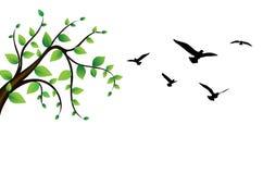 Fågel runt om en trädfilial stock illustrationer