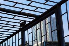 Fågel utanför buren Royaltyfria Bilder