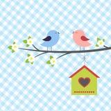 fågelallsångspringtime Royaltyfria Bilder