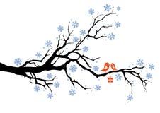fågelaskgåva stock illustrationer