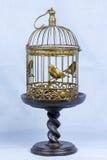 Fågelbur Royaltyfri Foto