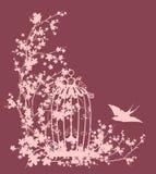 Fågelbur och vektorkontur för körsbärsröd blomning Arkivfoto