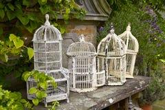 Fågelburar för vit metall för tappning Royaltyfri Foto