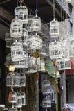Fågelburar i marknaden Royaltyfri Bild