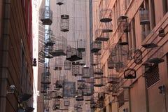 Fågelburar inställda över stadsgatan arkivbild