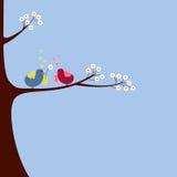 fågelförälskelse Royaltyfri Fotografi