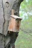 fågelförlagematare Fotografering för Bildbyråer