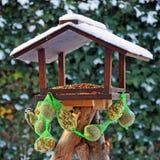 fågelförlagematare Royaltyfri Bild