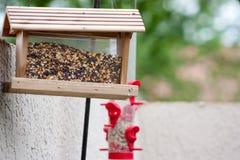 Fågelförlagematare i trädgården Royaltyfria Bilder