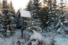 Fågelförlagematare i vinter Royaltyfria Foton