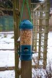 Fågelförlagematare mycket av frö i trädgård royaltyfri foto