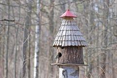 Fågelförlagematare och mes Arkivfoton