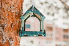 Fågelförlagematare på ett träd med suddig bakgrund royaltyfri foto