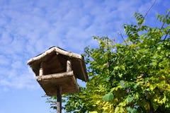 fågelförlagematareekorre Royaltyfria Foton