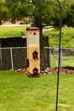 Fågelförlagemataren på herdar hakar i gården Arkivbild