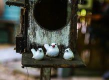 Fågelfamilj Fotografering för Bildbyråer