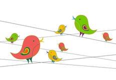 fågelfamilj Royaltyfri Bild
