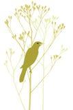 fågelfilial royaltyfri illustrationer