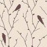 fågelfilialer mönsan den seamless vektorn vektor illustrationer
