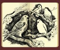 fågelfilialer som tecknar blommamoleskine royaltyfri illustrationer